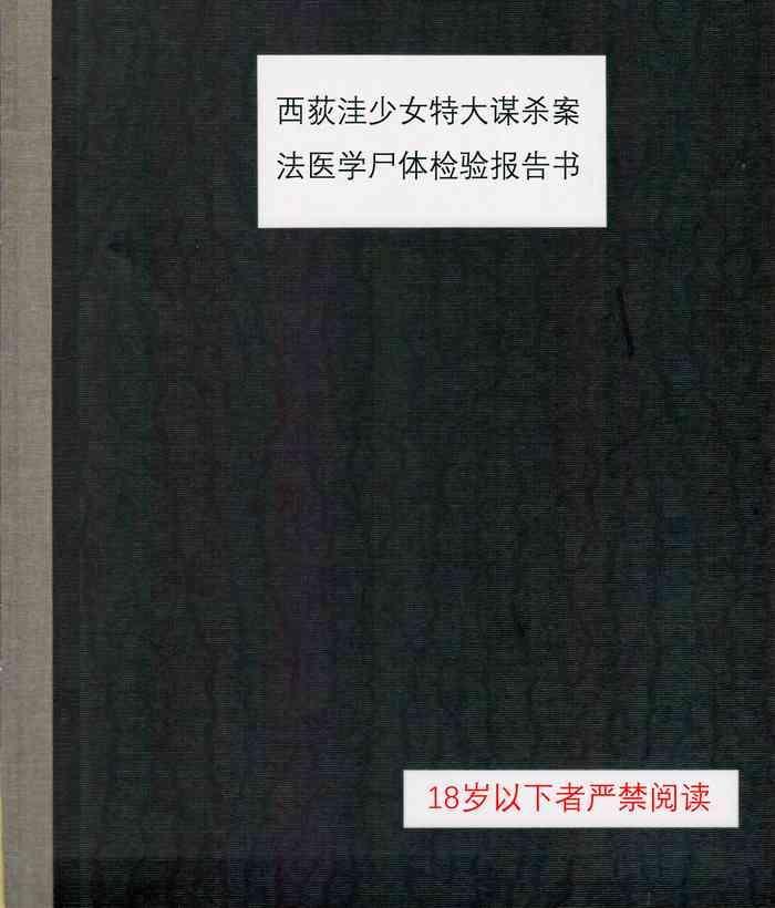 c95 02 harasaki nishiogikubo shoujo satsugai jiken shihou kaibou kiroku c95 cover