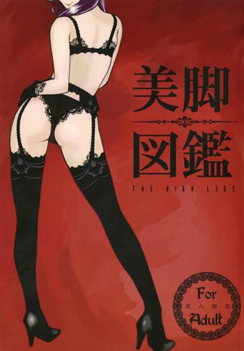bikyaku zukan cover