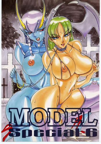 model special 6 cover