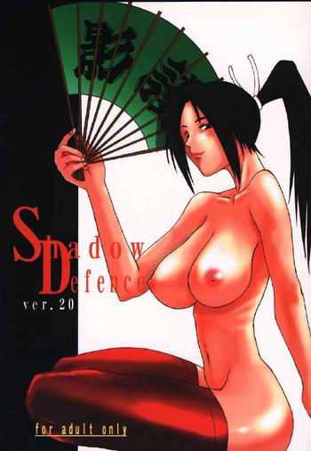 shadow defence ver 20 cover