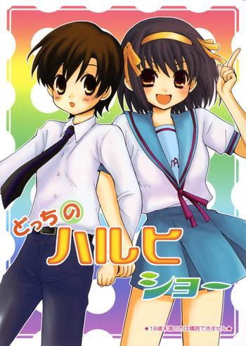 docchi no haruhi show cover