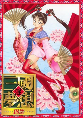 in sangoku musou cover 2