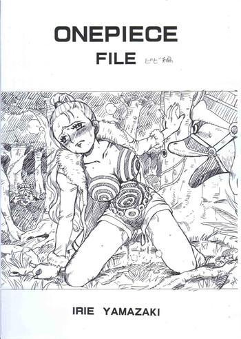 onepiece file bibi hen cover