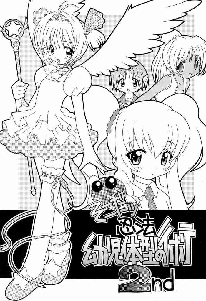 soko da ninpou youji taikei no jutsu 2nd cover